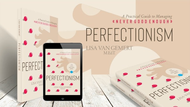 cover of Perfectionism